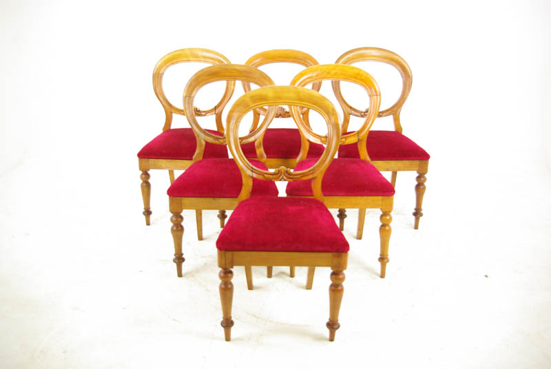 Antique Dining Chairs - Antique Dining Chairs, Balloon Back Chairs, Beech Wood,1870, B1029